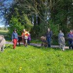 Wanderung mit geistig behinderten Erwachsenen - ein tolles Erlebnis!