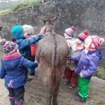 Kindergartenkinder putzen die Esel