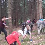 Spiel und Spass im Wald