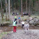 Abenteuer Bachüberquerung