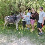 Familienbild mit Esel