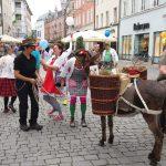 Klnikclowns und Esel in der Fußgängerzone Rosenheim