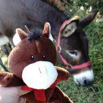 Mini-Paula, unser neues Maskottchen - und Paula im Original :)