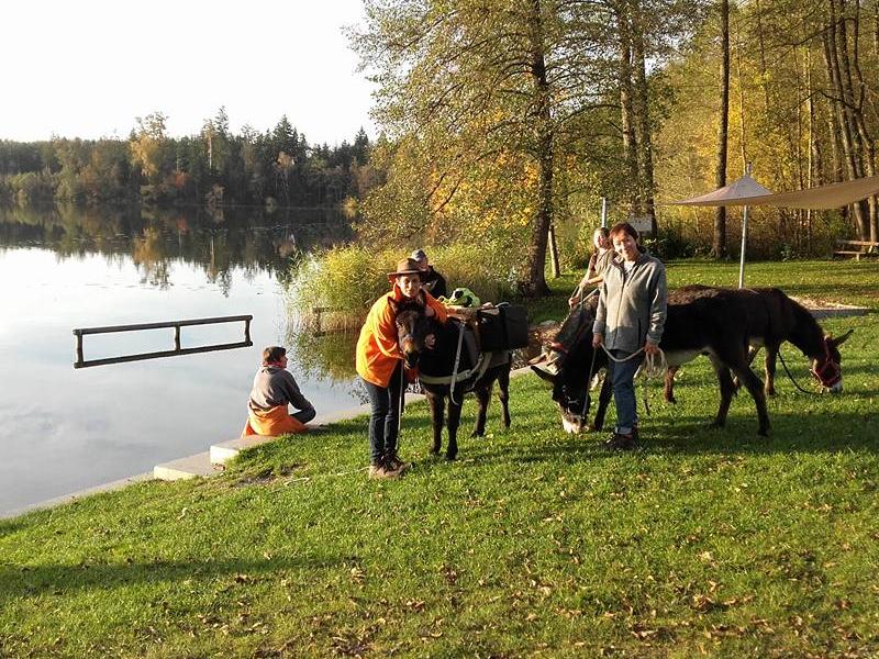 Spaziergang mit Eseln und Rast am See