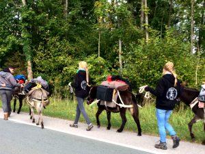 Eselwanderung mit Pfadfindern